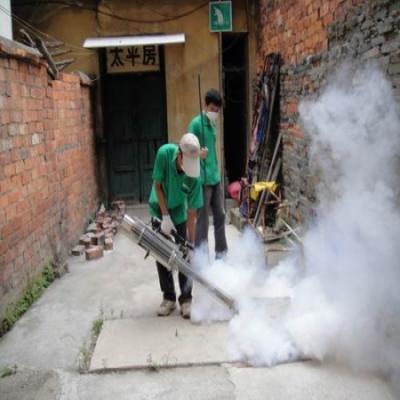 干净的环境可避免蚊虫入侵