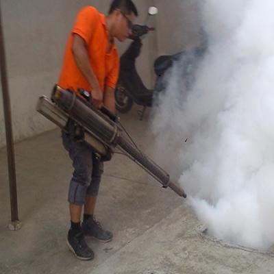 卫城白蚁防治推荐治白蚁的方法
